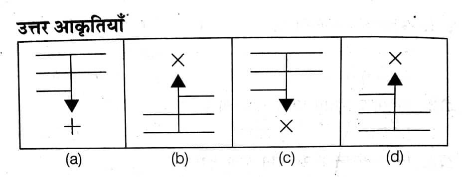 solved exam paper