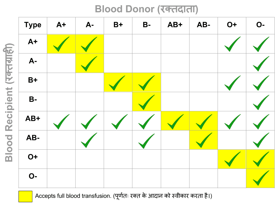 Chart of Blood Donor and Recipient