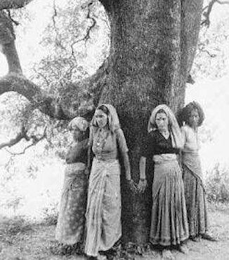 Chipko Aandolan Uttarakhand
